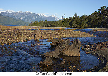 Lago Yelcho - Stream running into Lago Yelcho in the Aysen...