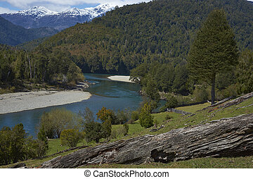 Rivers of Patagonia - Confluence of the rivers Frio and...