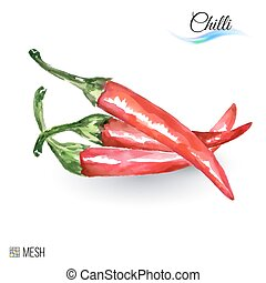 Chilli - Watercolor Chilli on White Background. Cute...