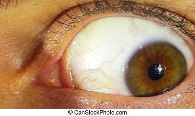 Crazy Eye Rotation