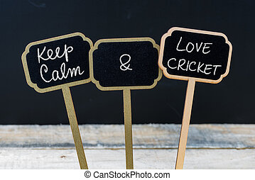 Keep Calm and Love Cricket message written with chalk on...