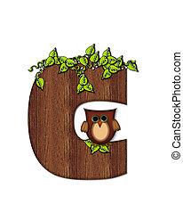 Alphabet Woodsy Owl C