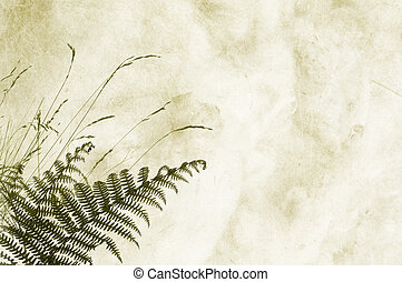 Textured background with fernery and space for text or image...