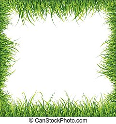 Realistic Square Green Grass Frame. Vector