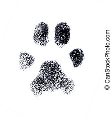 Dog fingerprint from my own pet