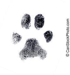 Dog fingerprint from my own pet