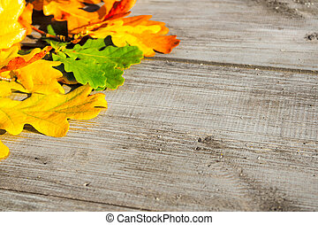 Autumn leaves on a table