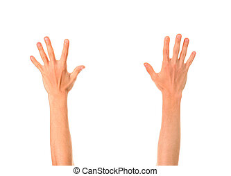 Hands Up Isolated on the White Background
