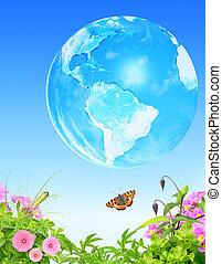 藍色, 夏天, 天空, 草, 昆虫, 背景, 地球, 花