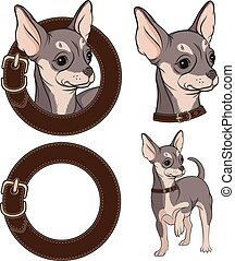 Color illustrations with Chihuahua - Set of color...