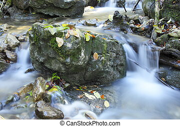 beautiful stream with autumn leaves and stones