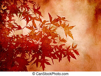 Textured decorative leaves of sweetgum for background or...