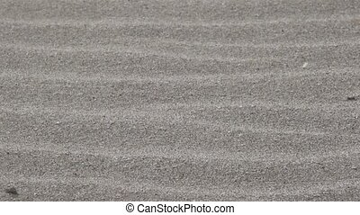 sand on the beach and strong wind