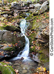 Appalachian stream - Water flowing over rock in a small...