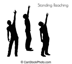 man in Standing Reaching  pose on white background