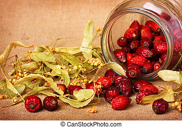 Rose hips and dry linden blossom on sacking background