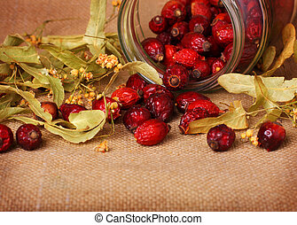 Rose hips and lime blossom - Rose hips and dry lime blossom...