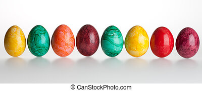 Colored eggs - Eight colored eggs on a white background