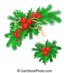 Vector Christmas holly with berries. eps10 illustration
