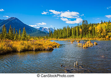 Beautiful lakes Vermilion in Banff. Canadian province of...