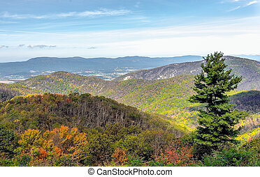 Shenandoah Valley as seen from the Skyline Drive in...