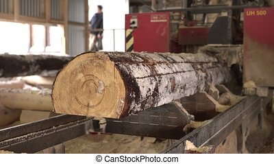 View of sawing wood on sawmill, close-up - Woodworking. View...