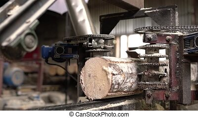Wood industry. View of log on sawing machine, close-up