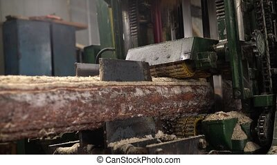 Wood industry. View of log sawing, close-up - Wood industry....