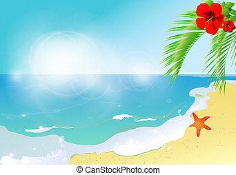playa, naturaleza