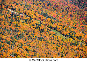 Mount Mansfield - Ski trails at Mount Mansfield near Stowe...