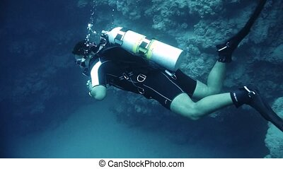 Diver swims at the depth. Red Sea. Egypt