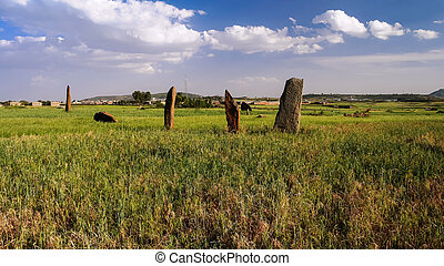 ancient Megalith stela field, Axum, Ethiopia - ancient...