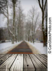 Footpath in a fabulous winter city park - Winter alley with...
