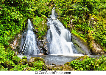 Triberg Falls, one of the highest waterfalls in Germany -...