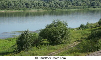 summer river and forest at riverside in Russia