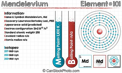Element of Mendelevium - Large and detailed infographic of...