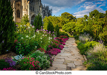 Plants and walkway in the Bishop's Garden and the Washington...