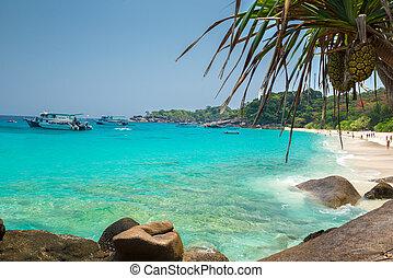 Beach of Similan Koh Miang Island in national park, Thailand