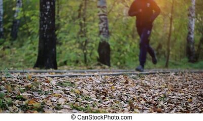 Man running in forest woods training. Fitness healthy...