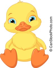 Duckling - Cute duckling sitting on a white background