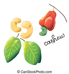 colorful cartoon cashew - Vector composition with an...