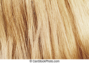 Blonde hair. Blond hair texture - closeup photo