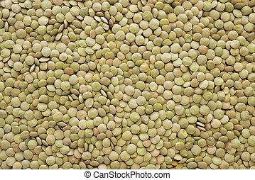 green lentil seeds - many dry green lentil seeds background
