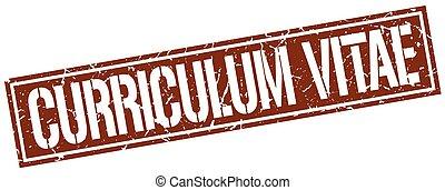 curriculum vitae square grunge stamp