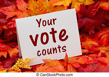 Your vote counts message