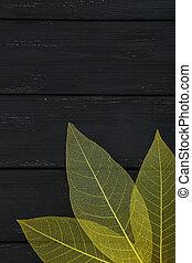 Skeleton leafs on black wooden background