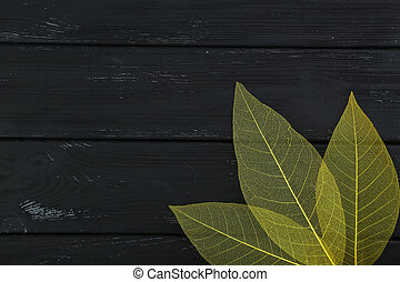 Skeleton leafs on black wooden background