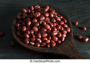 Raw Organic Red Adzuki Beans in a Bowl