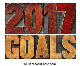 2017 goals in letterpress wood type - 2017 goals banner -...