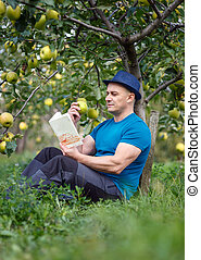 Man reading a book in the orchard - Man reading a book under...